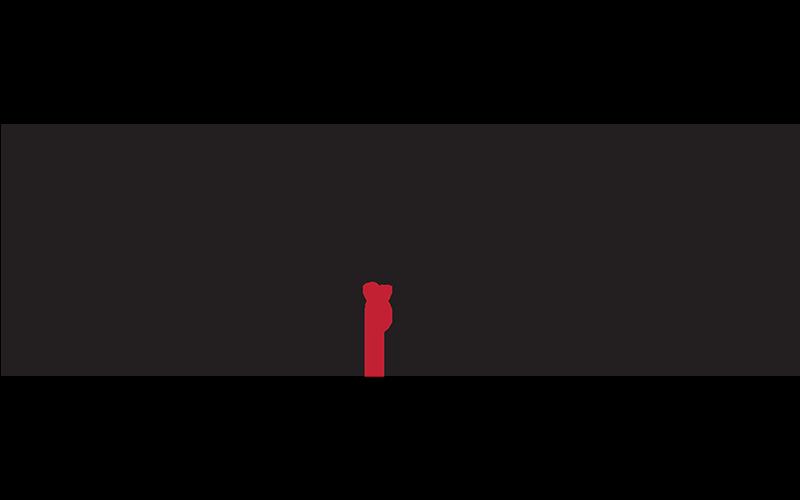 True North Management logo